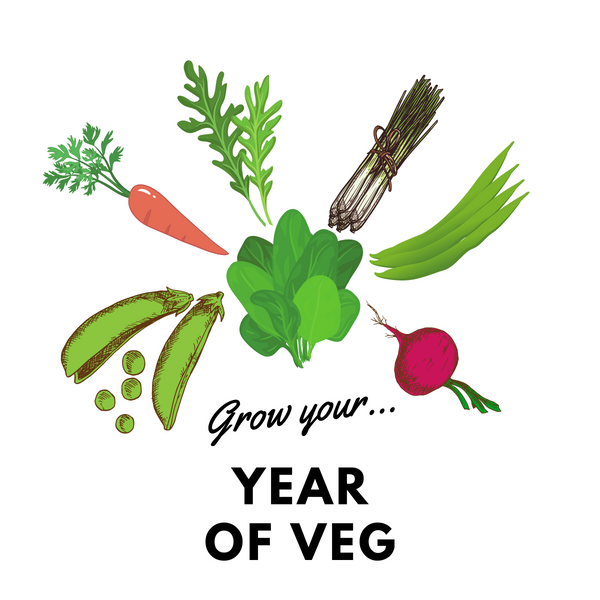 Grow Your Year of Veg: Organic Seed Collection - Mucky Knees Gift Boutique