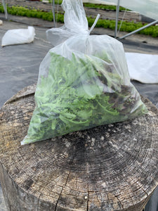 Lettuce Mix - 4 oz. bag
