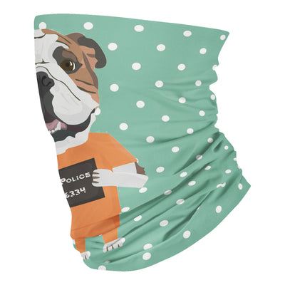 Mugshot prison clothes dog english bulldog - Neck Gaiter - Dreameris