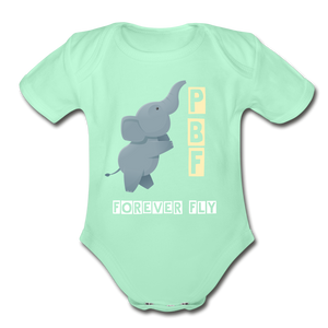 PaperboyFly Short Sleeve Baby Bodysuit - light mint
