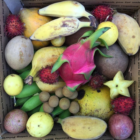 exotic fruit box tropical fruit boxes