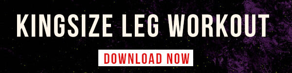 Kingsize Leg Workout PDF Download Link