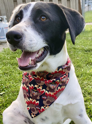 Turkey Bandana