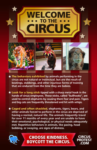 Circus Protest leaflet (includes elephants)