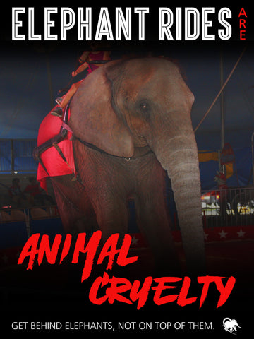 Elephant Rides are Animal Cruelty Protest Poster