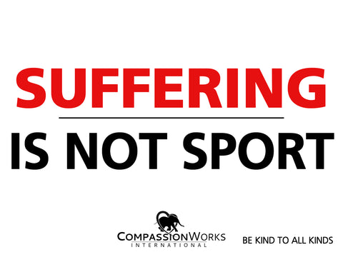 Suffering Is Not Sport