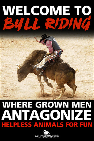 Welcome to Bull Riding Protest Poster
