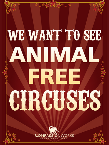 We Want to See Animal Free Circuses Protest Poster