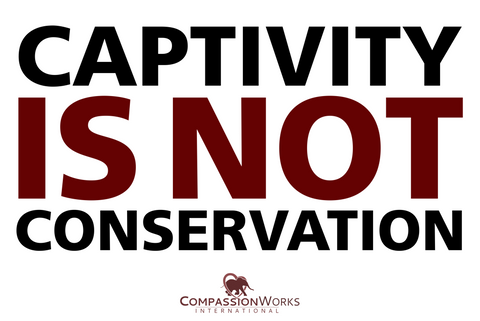 Captivity Is Not Conservation Protest Poster