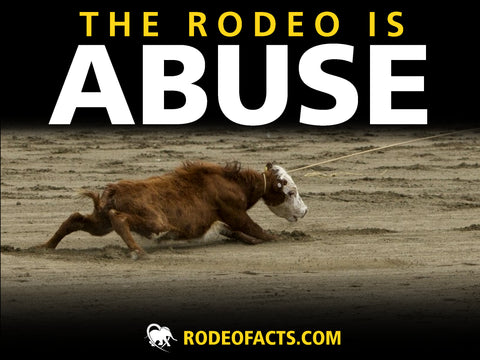 ABUSE Rodeo Protest Poster