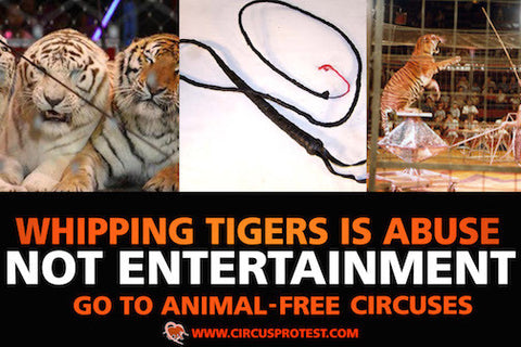 Whipping Tigers is Abuse protest poster