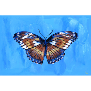 Butterfly Wind Canvas Fine Art Print