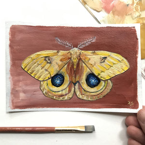 Yellow Io moth acrylic painting postcard by Aimee Schreiber