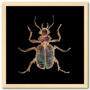 16 inch square Gold Foil Galactic Hunter Beetle Fine Art Print by Aimee Schreiber, galaxy gold leaf ink with natural maple wood frame