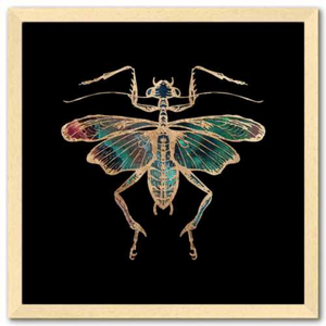 16 inch square Gold Foil Galactic Cricket Fine Art Print by Aimee Schreiber, galaxy gold leaf ink in natural maple wood frame