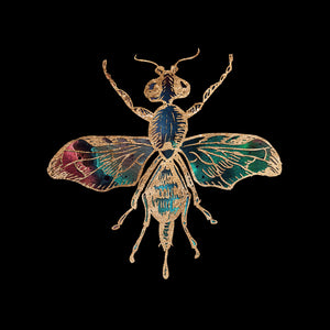 Gold Foil Galactic Fruit Fly Fine Art Print by Aimee Schreiber