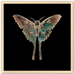 24 inch square gold Foil Galactic Luna Moth Art Print by Aimee Schreiber framed in natural maple wood