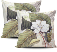 Pnfdjfgh Pack of 2 Bedding Sofa Pillowcases Vintage Magnolia Flower Hidden Zippered Decorative Throw Pillow Cover Square Size 18x18 Cushion Cases Two Sides Print