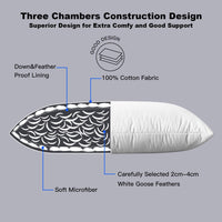 "Globon White Goose Feather Bed Pillows Queen Size 20""x 30"", 300 TC,100% Cotton Shell,Three Chambers,Hypoallergenic, Medium Firm and Soft Support, Set of 2, White"