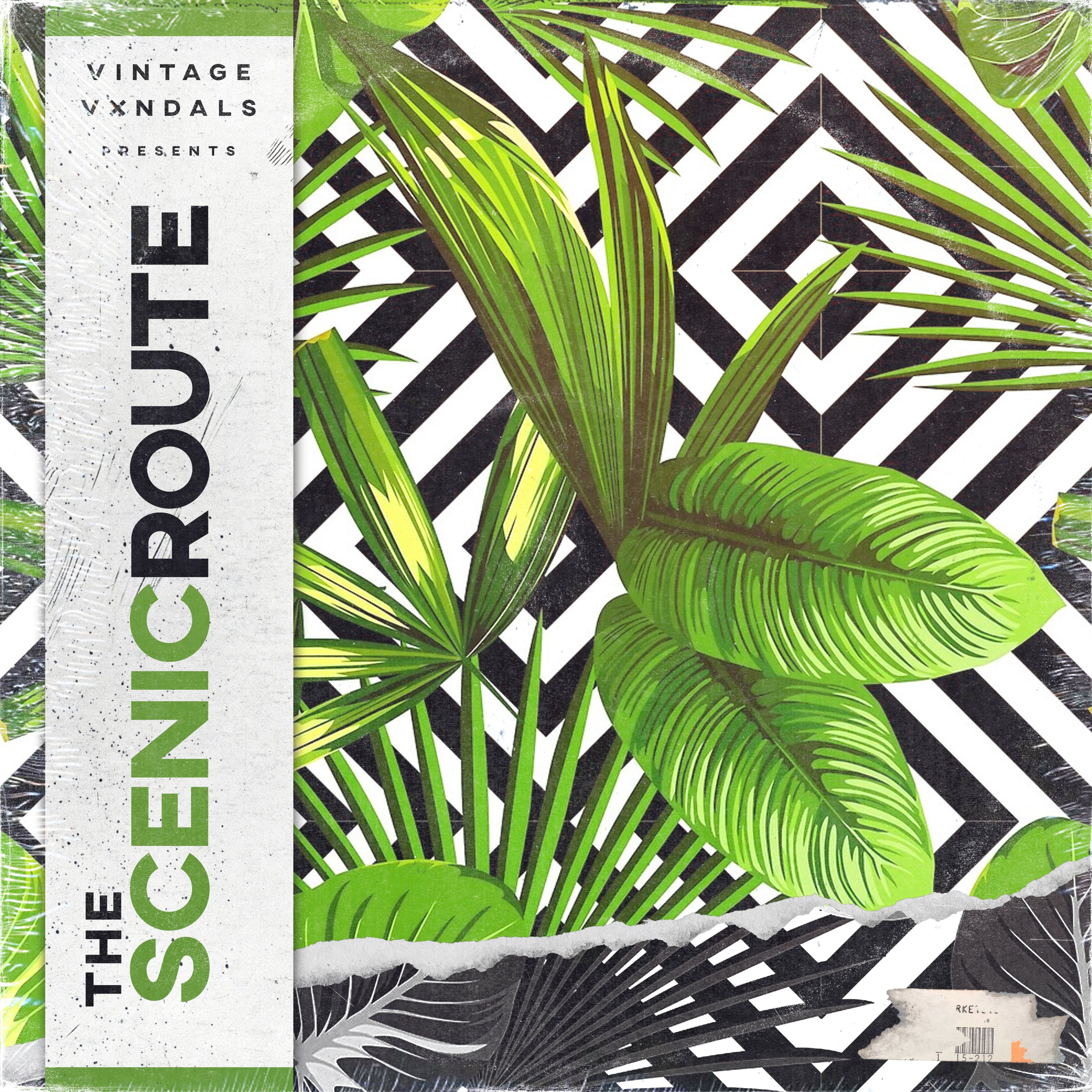 The Vintage Vxndals - The Scenic Route