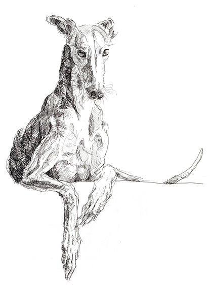 Framed Poster - Reclining Greyhound. Cool greyhound print, quirky dog art, lurcher print, funky lurcher whippet art, sighthound print, graceful dog• Alder, semi-hardwood frame.