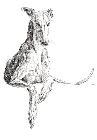 cool greyhound canvas, quirky dog art, lurcher print, gift for husband or boyfriend, funky lurcher whippet art, sighthound print, graceful dog