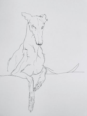 Greyhound poster, quirky dog art, lurcher print, funky lurcher whippet art, sighthound print, graceful dog