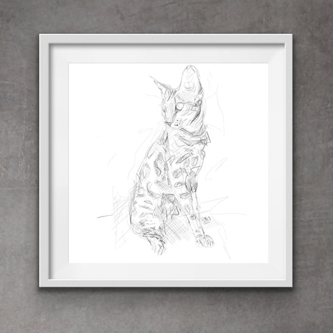 Bengal cat - cool cat art - quirky cat drawing - digital drawing - Bengal cat drawing - cute cat print - contemporary style - messy art. Cat