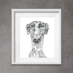 Cool greyhound art - quirky greyhound in messy style art. This unique pen and ink print of a sighthound popping his head a