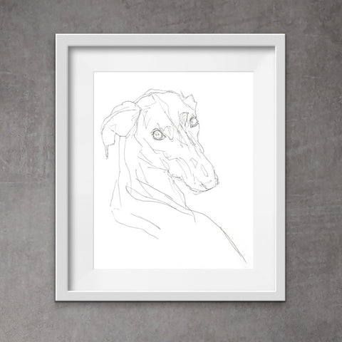 Cool greyhound art - quirky pen and ink print of a sighthound. With its unique messy style, this drawing of a greyhound