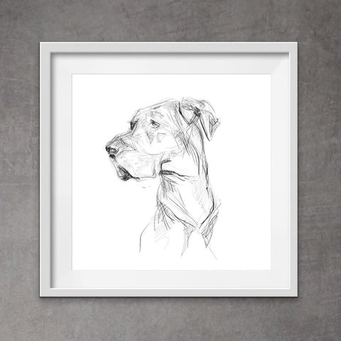 Cool digital head portrait of Great Dane, Cool Great Dane art - quirky pen and ink print of a Great Dane. With its unique messy style,