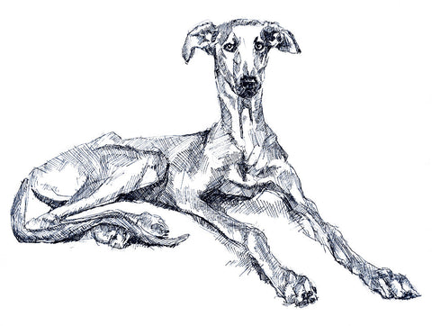 cool greyhound art canvas, greyhound print, quirky dog art, funky pet portrait, unique gift for him, lurcher print, sighthound print, groovy dog print