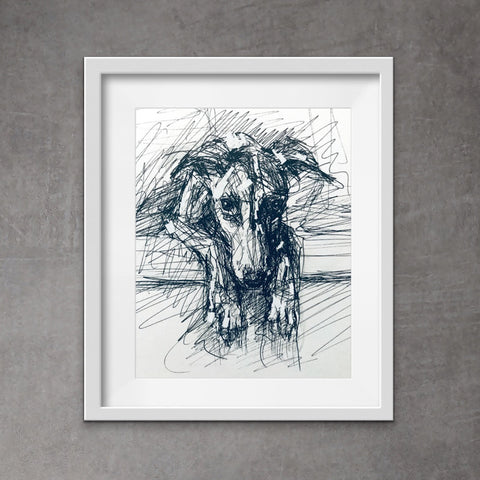 Cool dog portrait. Quirky whippet art. Pen and ink drawing of sweet whippet lying down looking over its paws -
