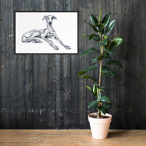 Framed poster of Cool Greyhound