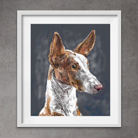 Quirky Digital Painting Pet Portraits
