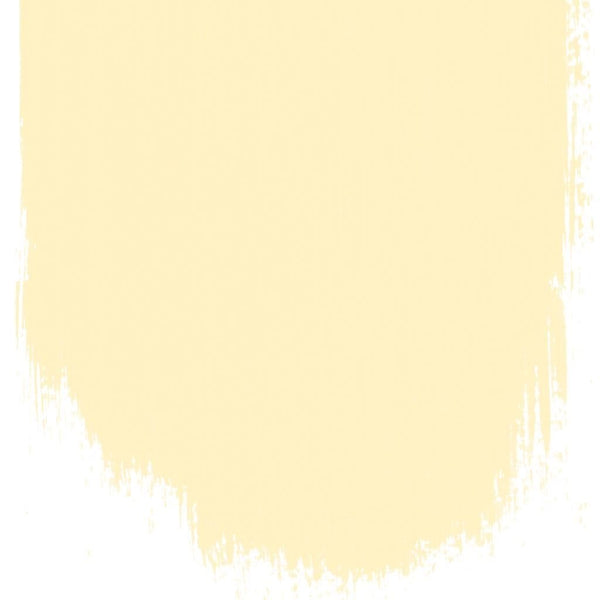 DG Sample Custard Cream No. 117 Paint