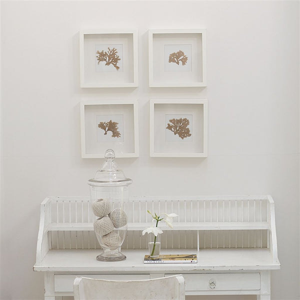 Designers Guild Plaster White No. 7