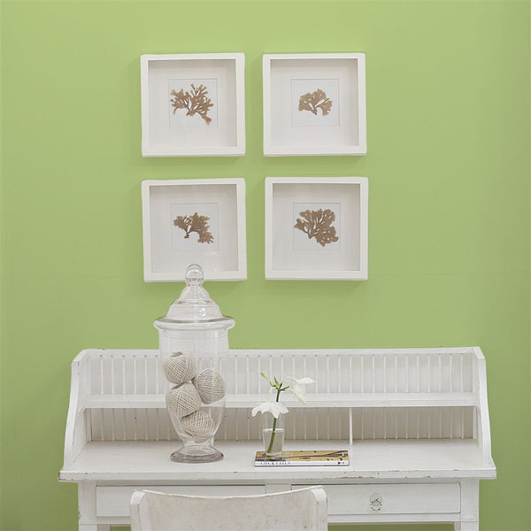 Designers Guild Mimosa Leaf No. 101