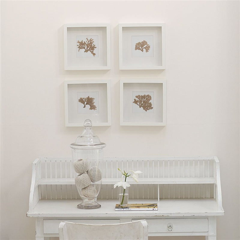 Designers Guild Stucco White No. 5