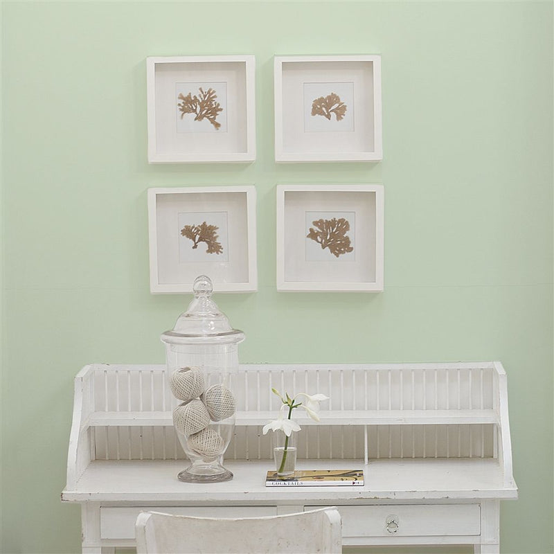 Designers Guild Almond Flower No. 89