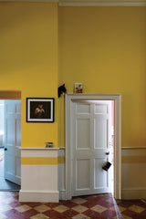 Farrow and Ball, Babouche 223