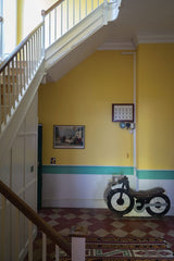 Farrow and Ball, Citron 74