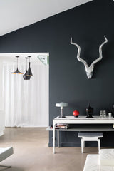 Farrow and Ball, Pitch Black 256