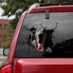 GREAT DANE CRACK CAR STICKER