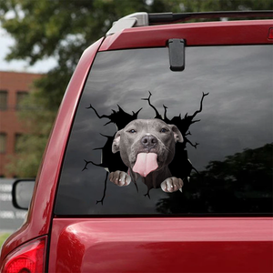 Pitbull Crack Car Sticker