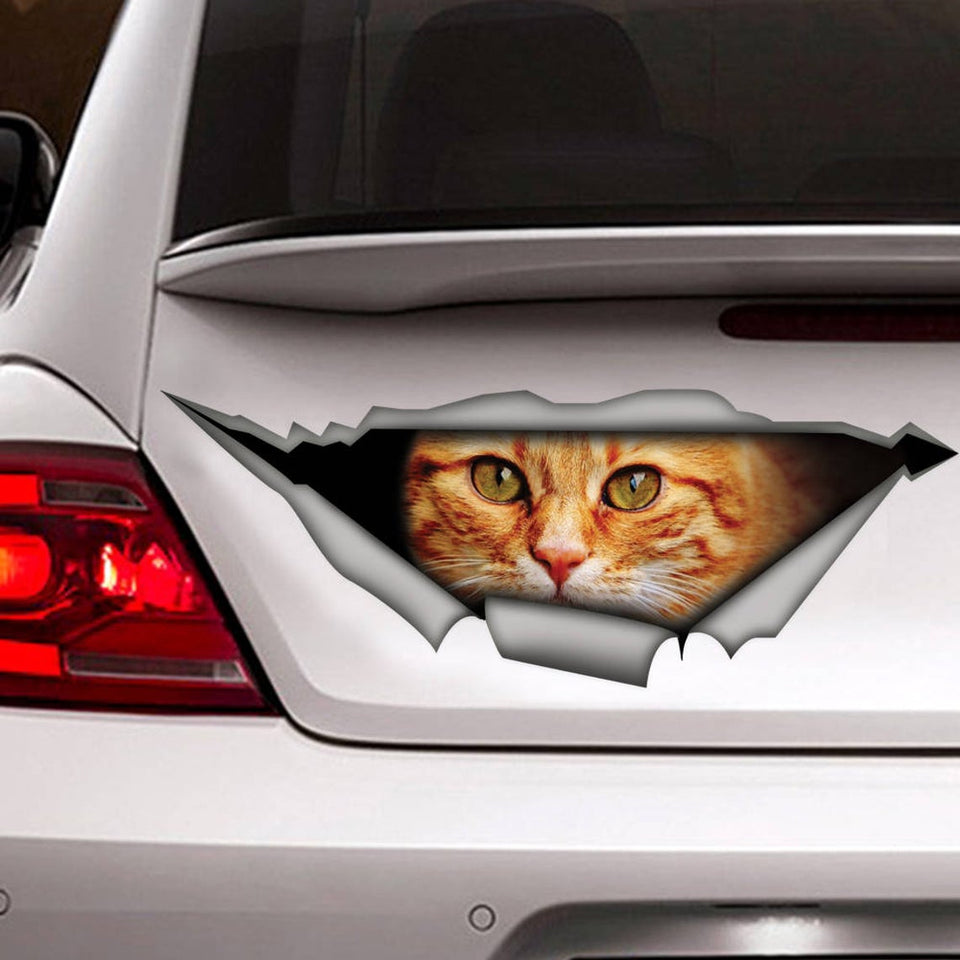 Cat Cat Car Sticker 1