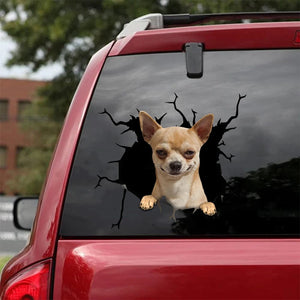 CHIHUAHUA CRACK STICKER DOGS LOVER 1