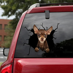 CHIHUAHUA CRACK STICKER DOGS LOVER 4