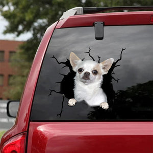 CHIHUAHUA CRACK STICKER DOGS LOVER 2