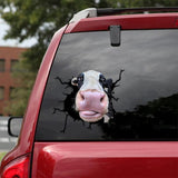 DAIRY COW CRACK STICKER CATTLE LOVER